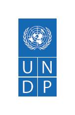 UNDP-Logo-Blue-Small
